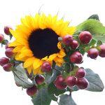 Blumen Grünwerkstatt