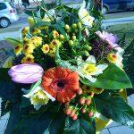 Grünwerkstatt Frühlingsblumen