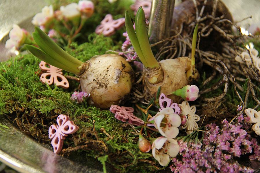 Grünwerkstatt Dekoschale mit Blumenzwiebeln