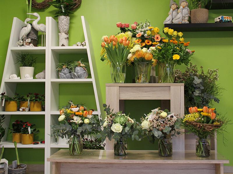 Grünwerkstatt mit Frühlingsblumen